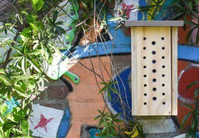 Bijenproject op de Antoniusschool in Nieuw Vennep